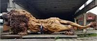 Pic of lion sculpture used in scam