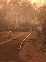 2020-09/1294/137790/Roadclearing.png
